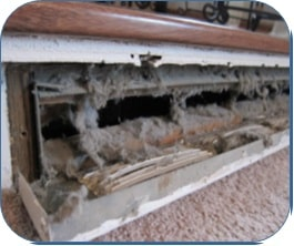 avoiding air duct cleaning scams